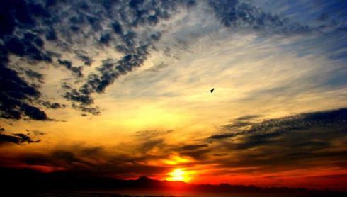 John sunrise (besT
